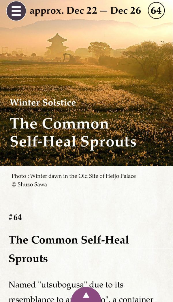 self-heal-dprouts