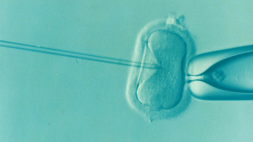 Poland changed its laws regarding IVF, denying women access to their own embryos