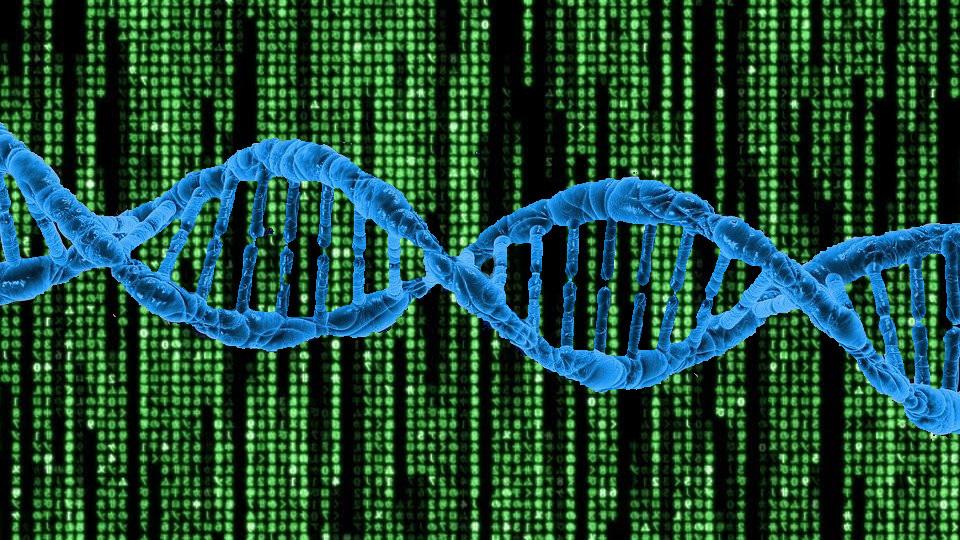 Understanding Genetic Algorithm 4