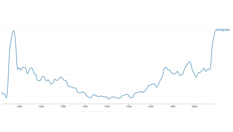 Tardigrades finally more popular than in 1835