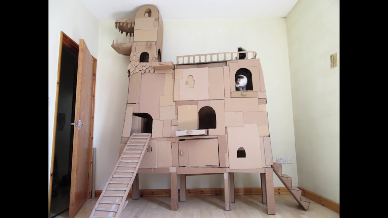 Cardboard cat fort