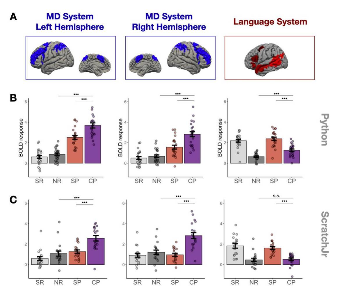 Screenshot of brain imaging study on mental activity during programming
