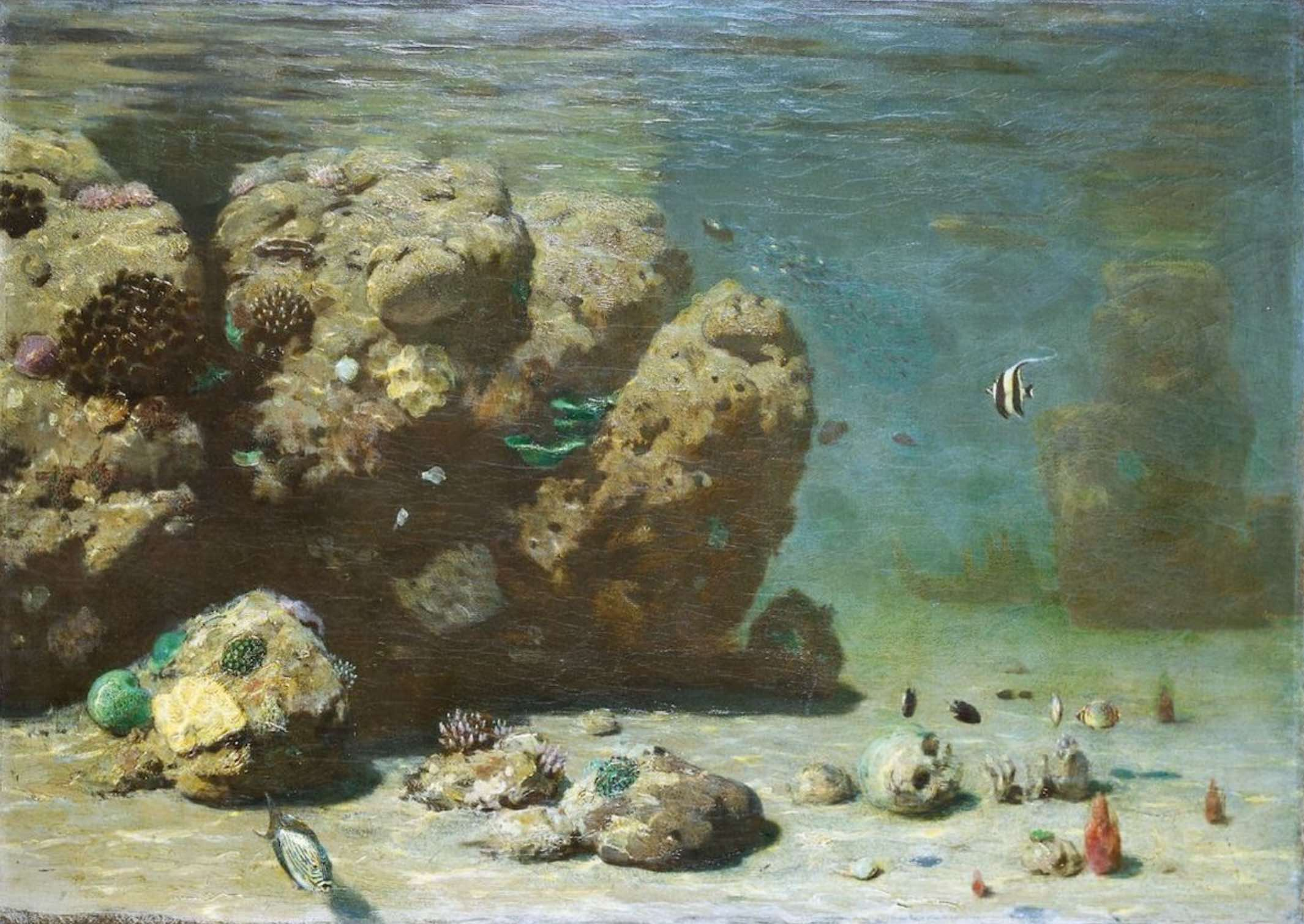Stunning underwater scenes drawn by hand in an 1860s submersible