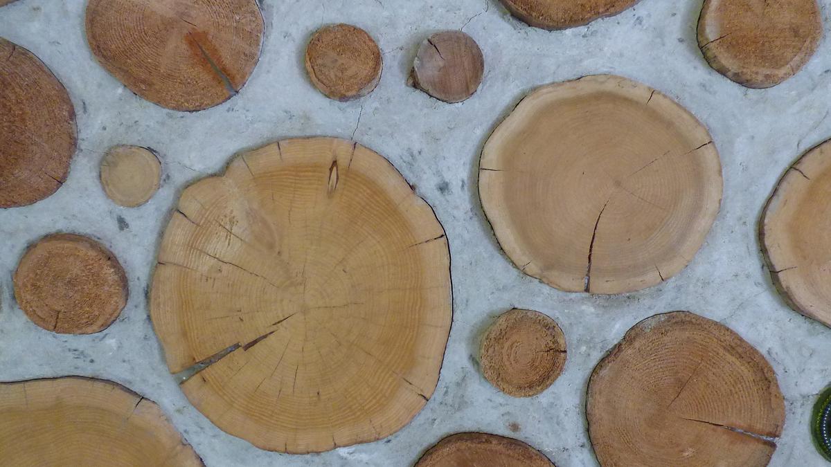 log and mortar wall