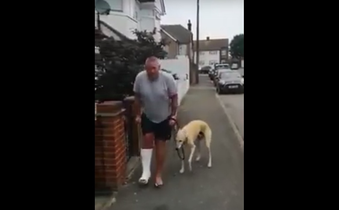 Watch: Dog fakes a limp to copy his owner who is wearing a cast | Boing Boing