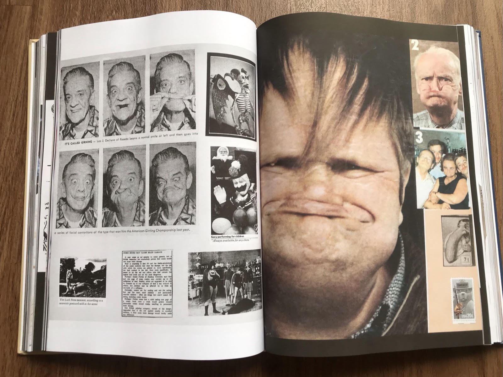 This 508-page collection of found art is a happy mutant's delight
