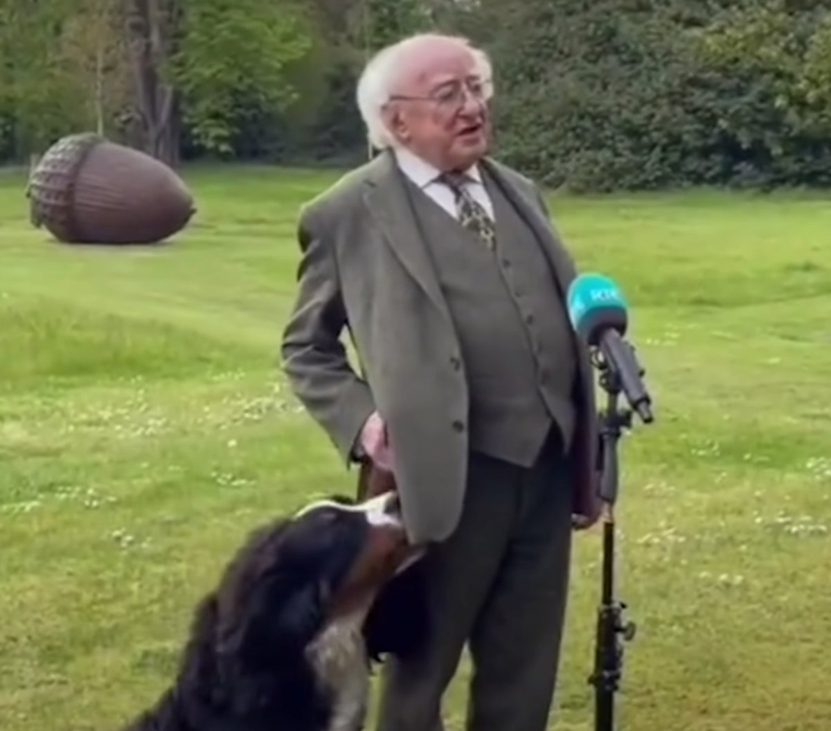 Ireland President's dog interrupts press conference with cuteness | Boing Boing