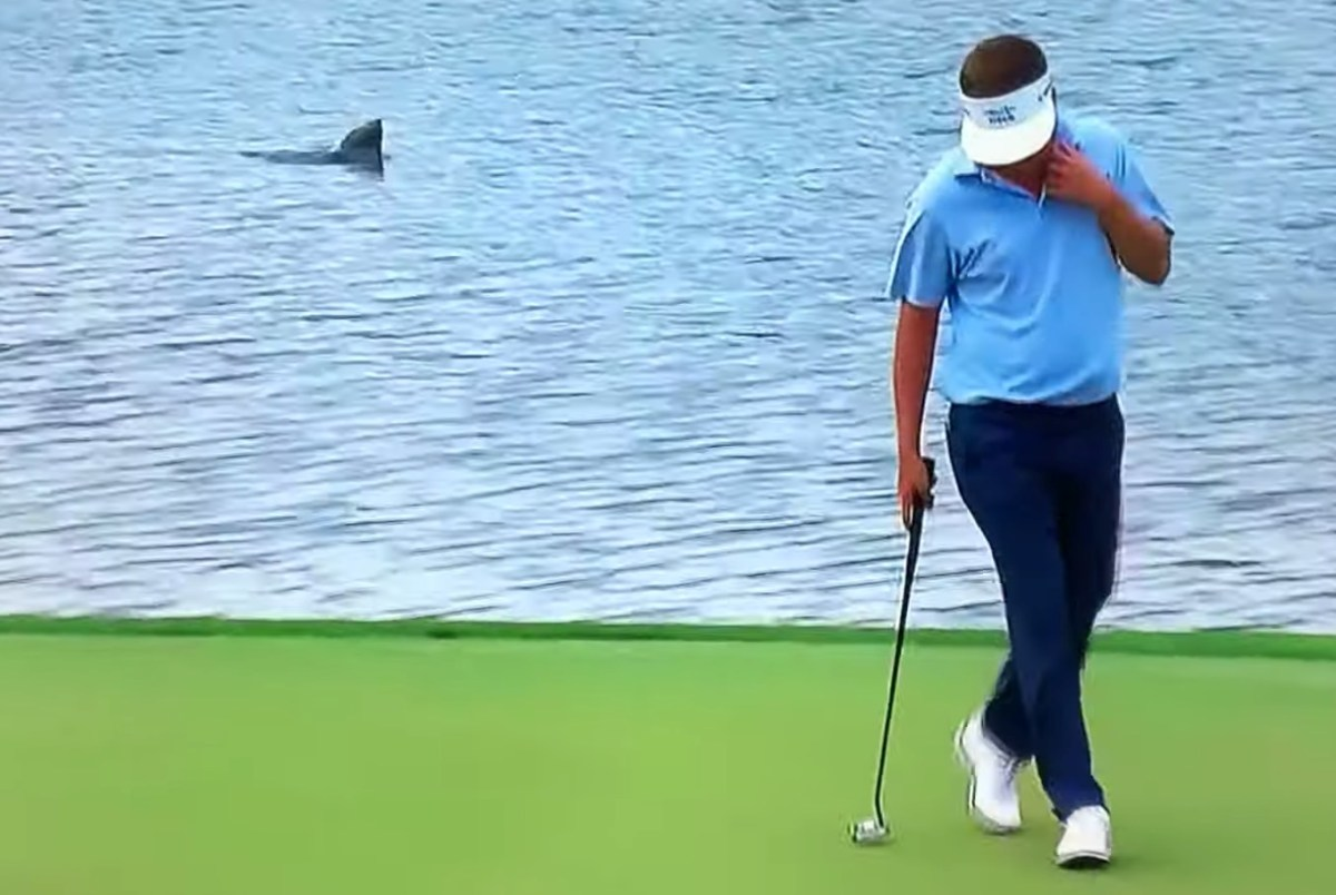 Wild video of lake monster emerging from the water during golf championship | Boing Boing