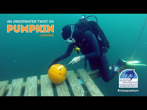 Carving a pumpkin while scuba diving is pretty darn difficult | Boing Boing