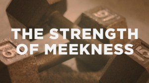 meekness not weakness