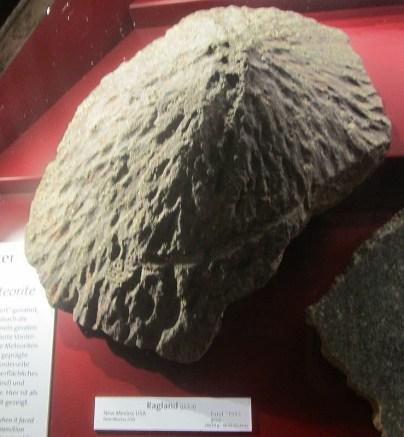 Regland - zelo lep primerek orientiranega meteorita