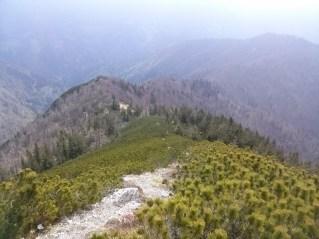 Pogled nazaj na Javorjev vrh