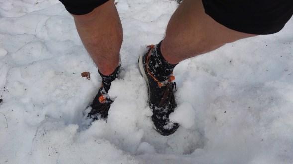 Južen spomladanski sneg
