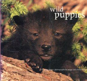 Wild Puppies - Peggy Bauer