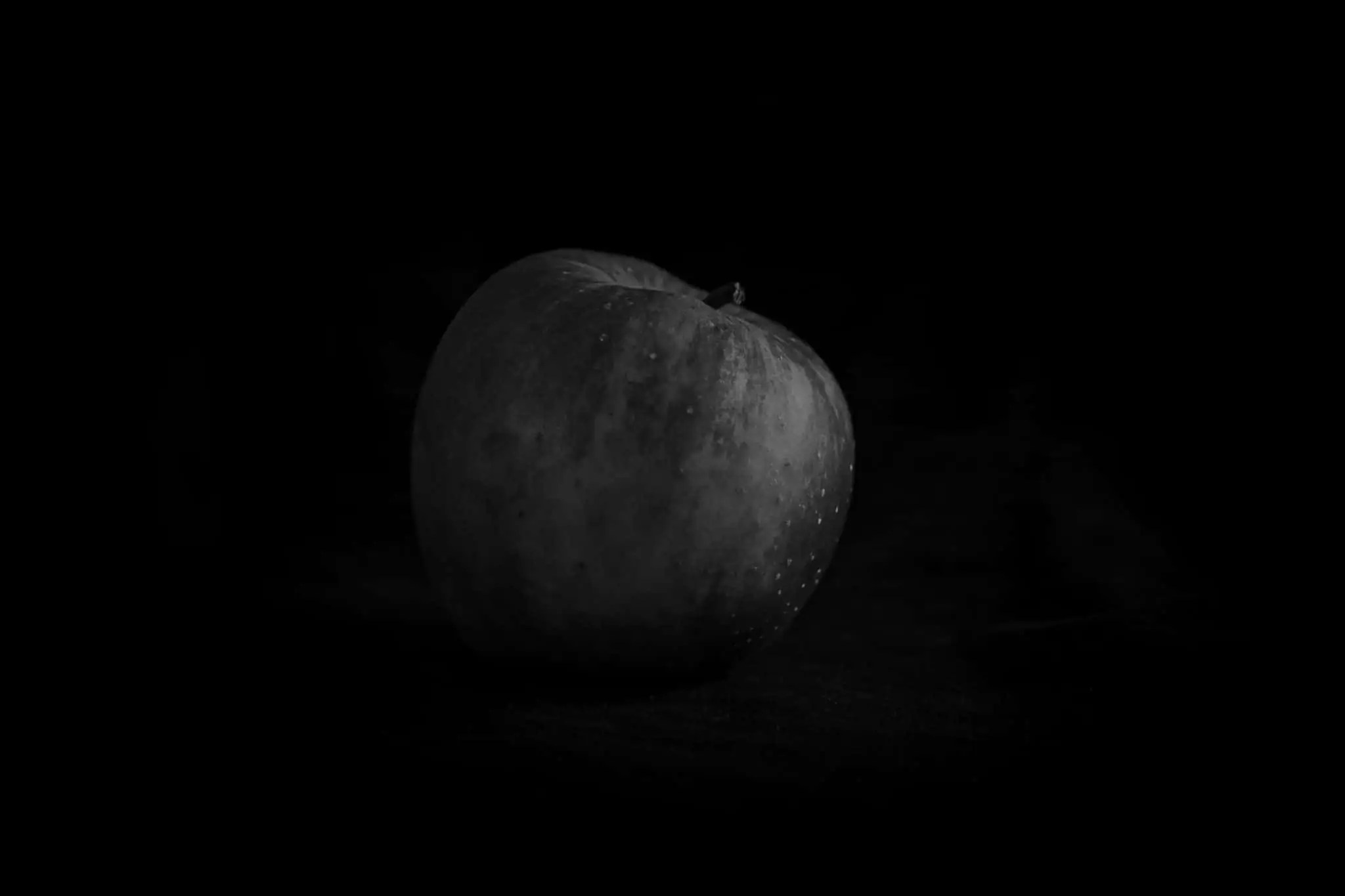Zdjęcia jabłek w stylu rembrandta 2 2 scaled - Zdjęcia jabłek - polskie owoce
