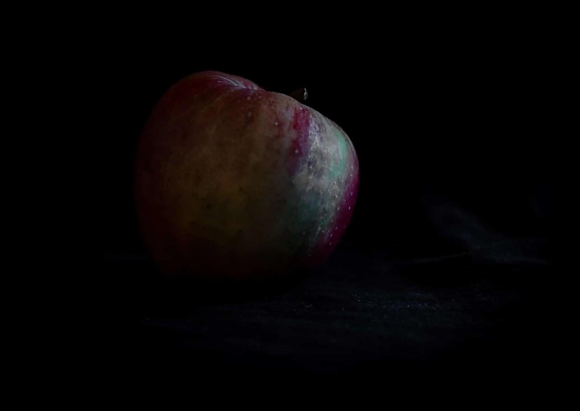 Zdjęcia jabłek w stylu rembrandta 3 - Zdjęcia jabłek - polskie owoce