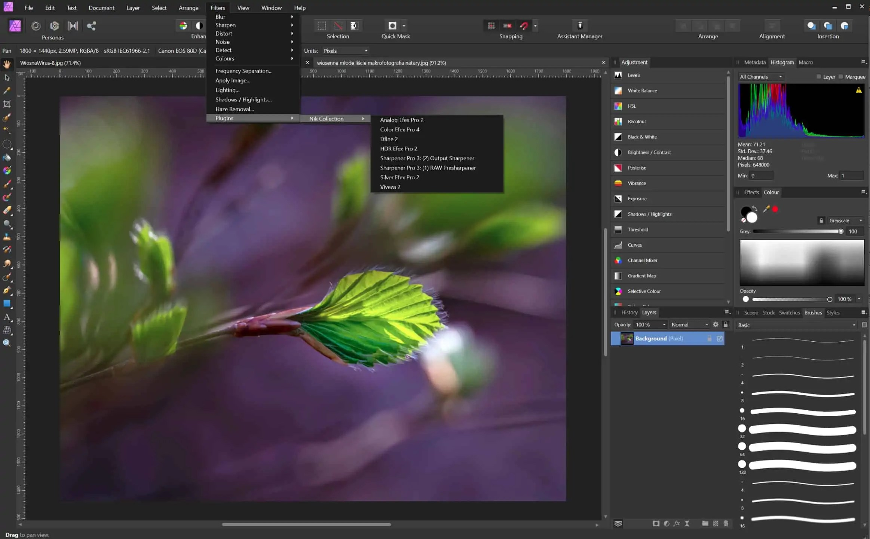 Nik collection 2012 wtyczki zainstalowane a affinity photo - Nik collection - kolejny darmowy zestaw narzędzi