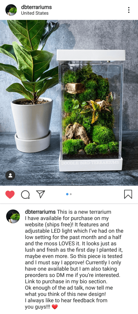 DBTerrariums Review