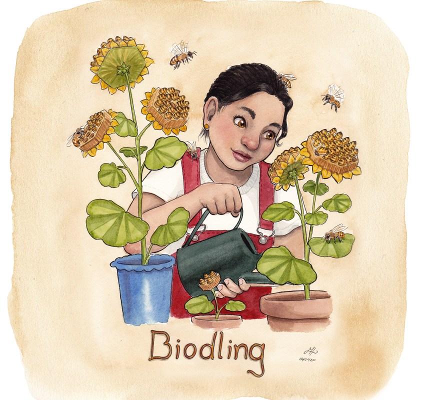 biodling illustration ordvits