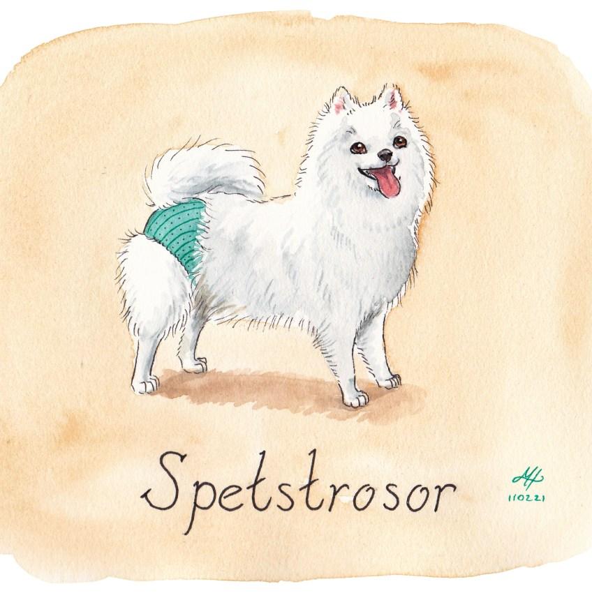 spetstrosor illustration ordvits