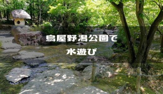 【新潟市中央区】鳥屋野潟公園のせせらぎで水遊び