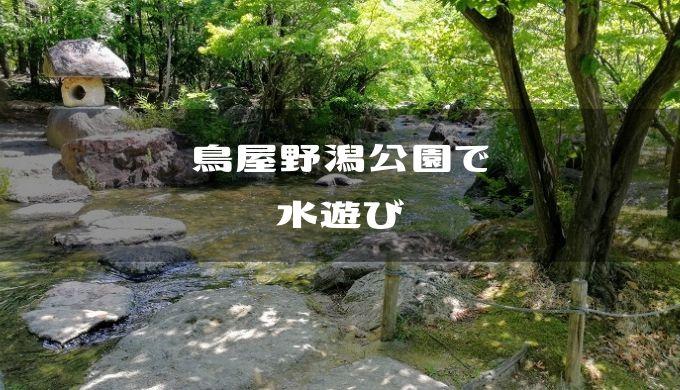 新潟市中央区】鳥屋野潟公園のせせらぎで水遊び   ボクと娘と娘と妻と