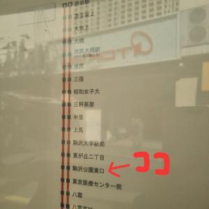 komazawa-Park-3