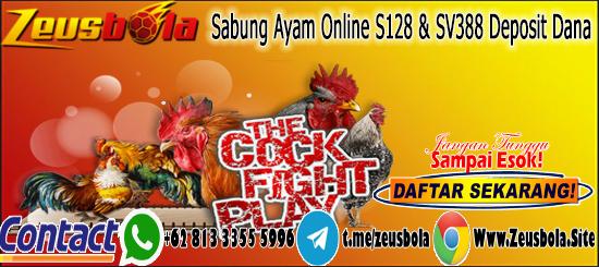 Sabung Ayam Online S128 & SV388 Deposit Dana