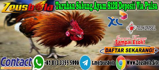 Taruhan Sabung Ayam S128 Deposit Via Pulsa