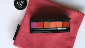 Lip palette & brush is atop the hot pink pouch and is open displaying the 6 shades