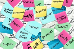 Multi-colored post-it notes each containing a word or two like potential, mentor, coaching, ability, strategies, process, customer, guide, tactics, participation, team, projeects, development, etc.