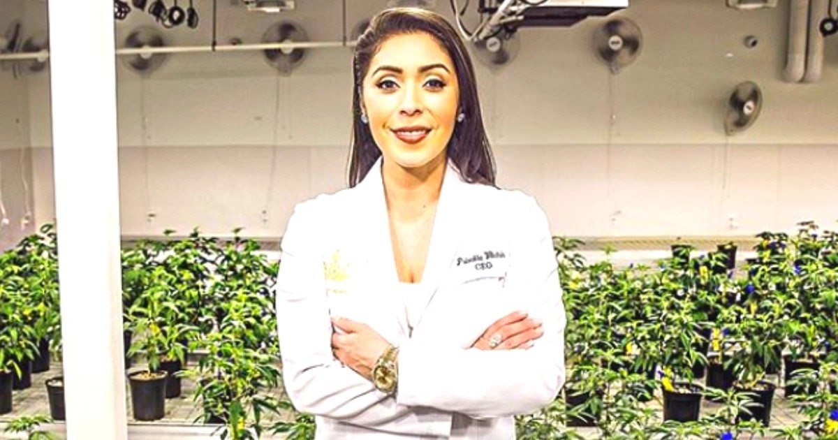 Latinas In The Cannabis
