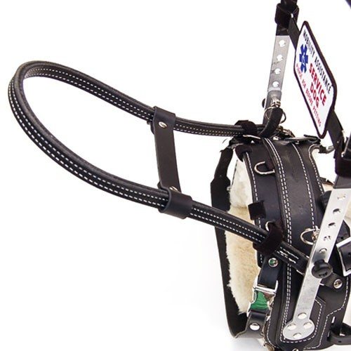 Guide Dog Harness For Sale