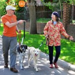 Neighborhood walk with Dewey and Daisey 0072 - Happy Customers