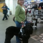 bauer dena and a bouvier xl - Service Dogs in Action