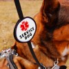 Leash Wrap for Service Dog: double-sided badge