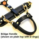 Bridge Handle shown on plain top with d rings 0069 150x150 - Everyday Working Harness