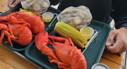 Lobster and Steamers Maine