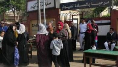 Photo of إعلاميون يناشدون أهالي ميت غمر بعدم انتخاب مرتضى منصور