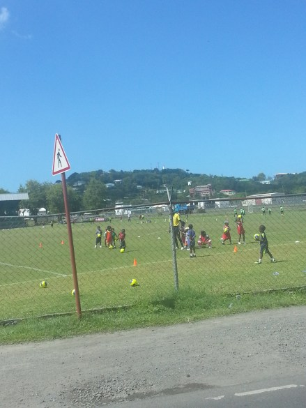 Kids or people playing sports on the fields