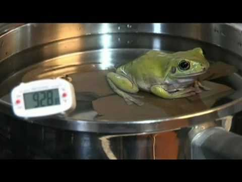 California Vaccine Mandates and The Boiled Frog Effect