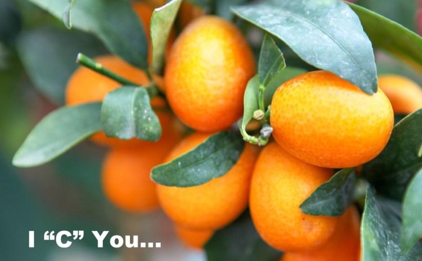 Vitamin C and CoronaVirus –