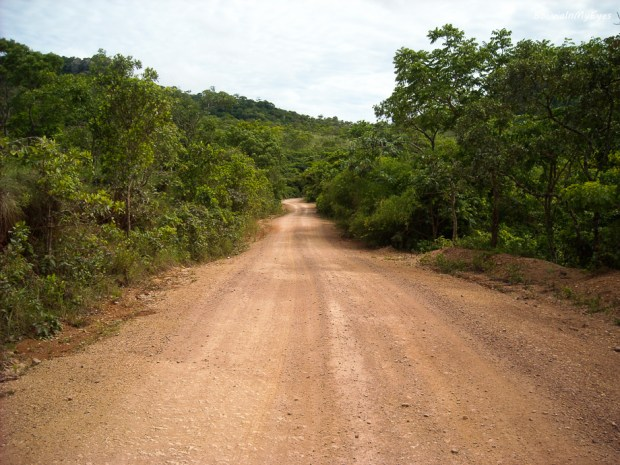 Chiquitano