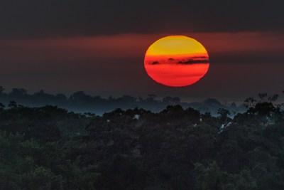 Solopgang over Amazonas