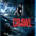 Crawl 2019 BluRay 650Mb Hindi Dual Audio ORG 720p ESub