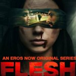 Flash 2020 WEB-DL 1.6GB Hindi S01 Complete Download 720p