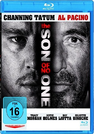 The Son Of No One 2011 BluRay 300Mb Hindi Dual Audio ORG 480p Watch Online Full Movie Download bolly4u