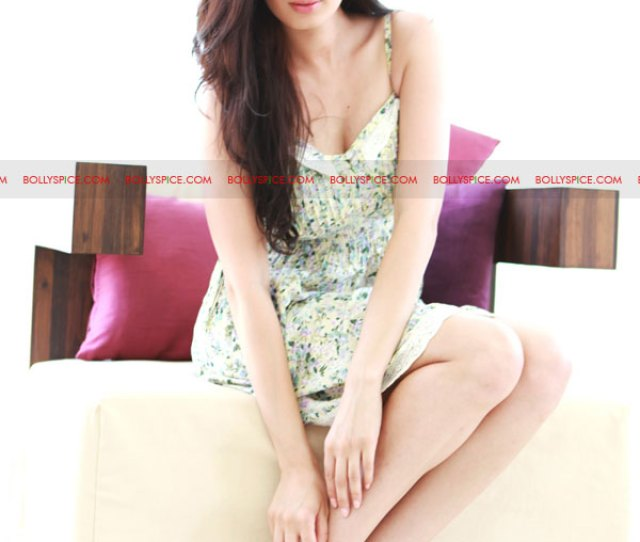 Bollywood Newbie Evelyn Sharma The New Face Of Rocky S