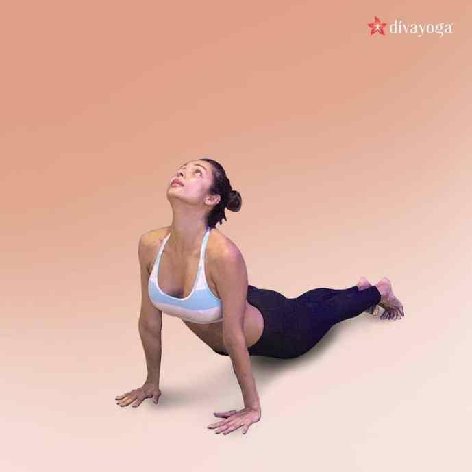 Malaika Arora Biography, Weight, Age, Affairs & More
