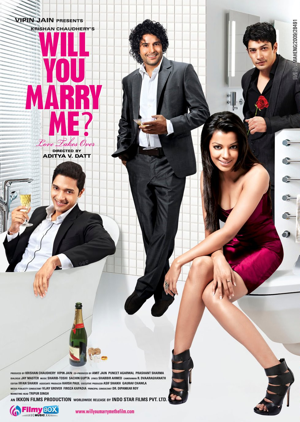 Will You Marry Me ? poster is copied from How I Met Your Mother